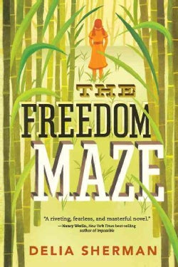 The Freedom Maze (Paperback)