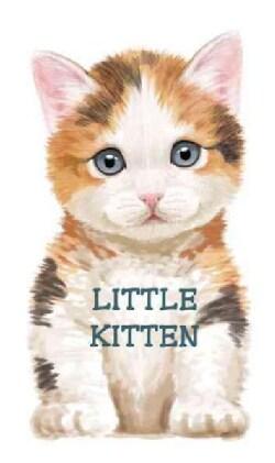 Little Kitten (Board book)