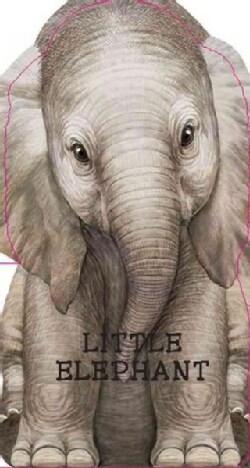 Little Elephant (Board book)