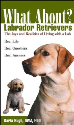 What About? Labrador Retrievers (Paperback)