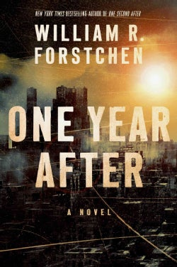 One Year After (Hardcover)
