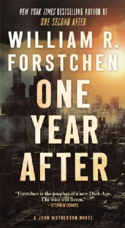 One Year After (Paperback)