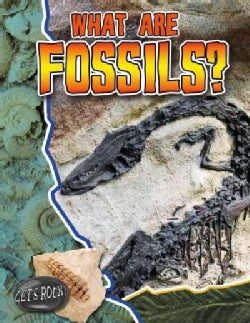 What Are Fossils? (Paperback)
