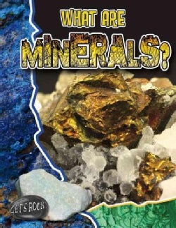 What Are Minerals? (Paperback)
