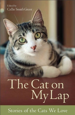 The Cat on My Lap: Stories of the Cats We Love (Paperback)