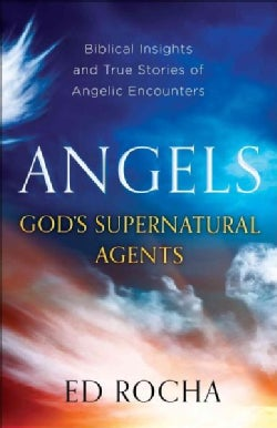 Angels-God's Supernatural Agents: Biblical Insights and True Stories of Angelic Encounters (Paperback)
