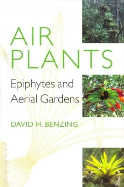 Air Plants: Epiphytes and Aerial Gardens (Hardcover)