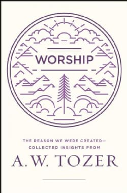 Worship: The Reason We Were Created - Collected Insights (Paperback)