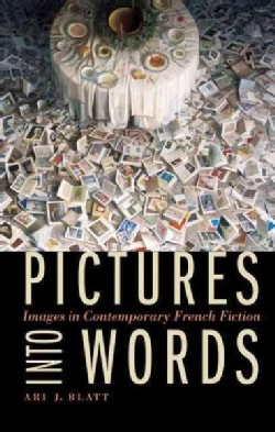 Pictures into Words: Images in Contemporary French Fiction (Hardcover)