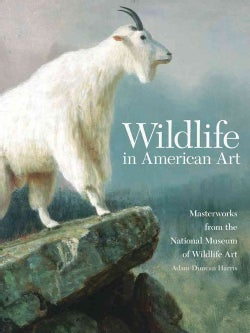 Wildlife in American Art: Masterworks from the National Museum of Wildlife Art (Paperback)