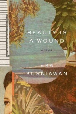 Beauty Is a Wound (Paperback)