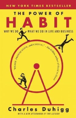 The Power of Habit: Why We Do What We Do in Life and Business (Paperback)