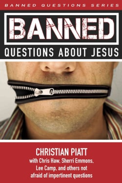 Banned Questions About Jesus (Paperback)