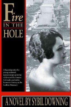 Fire in the Hole (Paperback)