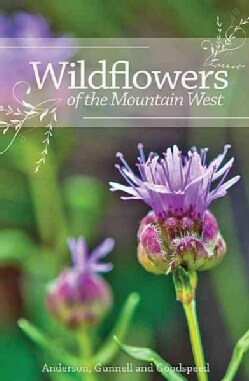 Wildflowers of the Mountain West (Paperback)