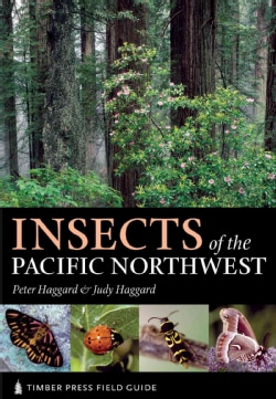 Insects of the Pacific Northwest (Paperback)