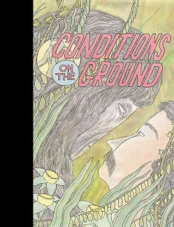 Conditions on the Ground (Hardcover)