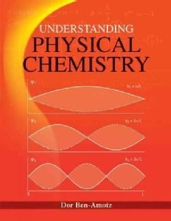 Understanding Physical Chemistry (Hardcover)
