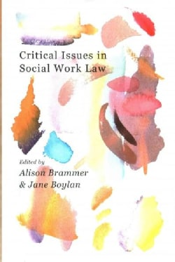 Critical Issues in Social Work Law (Paperback)