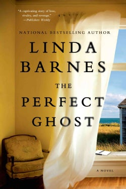 The Perfect Ghost (Paperback)
