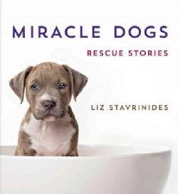 Miracle Dogs: Rescue Stories (Hardcover)