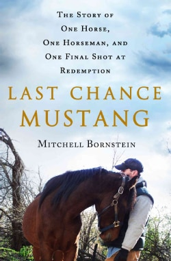 Last Chance Mustang: The Story of One Horse, One Horseman, and One Final Shot at Redemption (Hardcover)