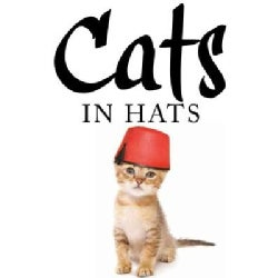 Cats in Hats (Hardcover)