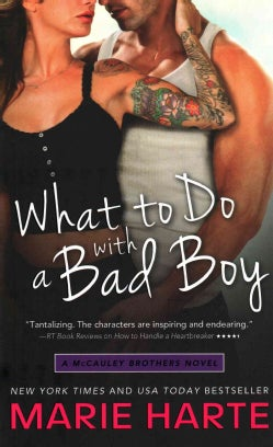 What to Do With a Bad Boy (Paperback)