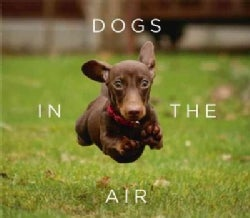 Dogs in the Air (Hardcover)