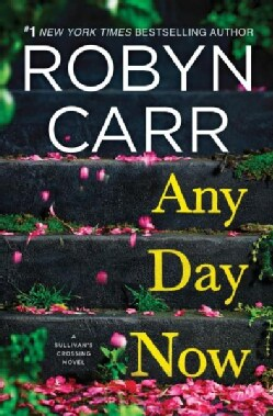 Any Day Now (Hardcover)