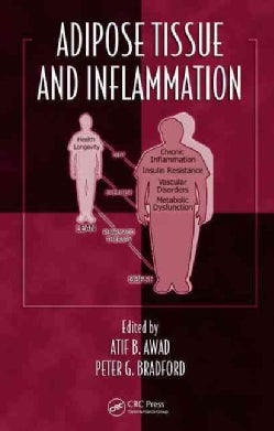 Adipose Tissue and Inflammation (Hardcover)