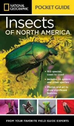 National Geographic Pocket Guide to Insects of North America (Paperback)