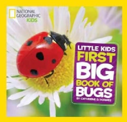 Little Kids First Big Book of Bugs (Hardcover)