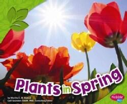 Plants in Spring (Paperback)