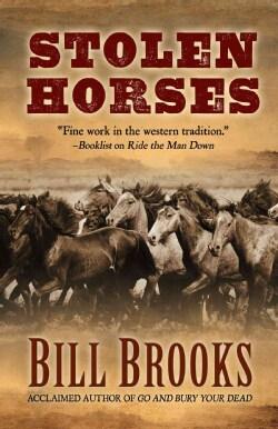 Stolen Horses (Hardcover)