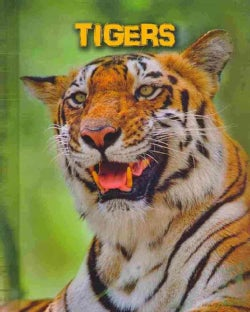 Tigers (Hardcover)