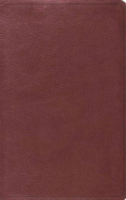 Holy Bible: English Standard Version, Value Thinline, Trutone, Burgundy (Paperback)