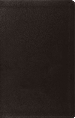 The Holy Bible: English Standard Version, Value Thinline, Trutone, Black (Paperback)