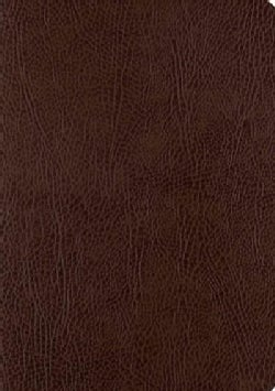 Holy Bible: English Standard Version, Mocha, Bonded Leather, Single Column Journaling Bible (Paperback)