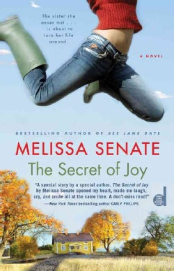 The Secret of Joy (Paperback)