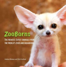 Zooborns: The Newest, Cutest Animals from the World's Zoos and Aquariums (Hardcover)