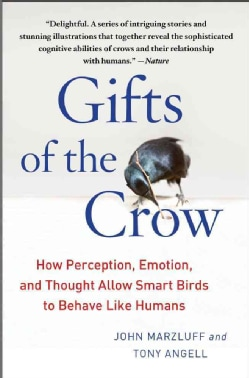 Gifts of the Crow: How Perception, Emotion, and Thought Allow Smart Birds to Behave Like Humans (Paperback)