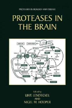 Proteases in the Brain (Paperback)