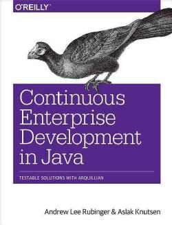 Continuous Enterprise Development in Java (Paperback)