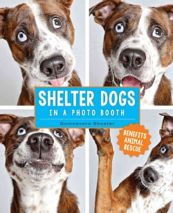 Shelter Dogs in a Photo Booth (Hardcover)