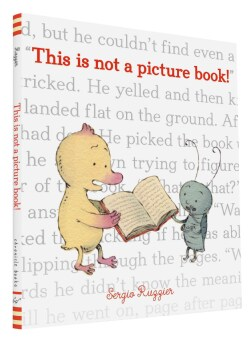 This Is Not a Picture Book! (Hardcover)