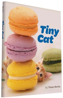 Tiny Cat (Hardcover)