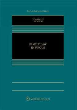 Family Law in Focus (Hardcover)