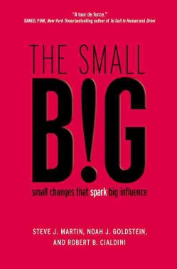 The Small Big: Small Changes That Spark Big Influence (Hardcover)