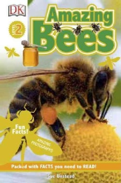 Amazing Bees (Paperback)